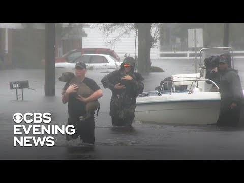 Rescue teams race to help people -- and pets -- as floodwaters rise