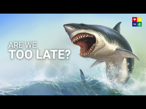 The SHOCKING truth about our dying oceans.