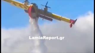 LamiaReport: Πυρκαγιά Σέτα Ευβοίας