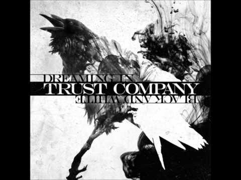 Trust Company- Skies Will Burn