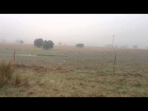 Ruta MTB, El Vicario 3, con niebla. 4) Cañada Real Soriana Oriental 1