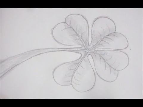 how to draw a clover leaf