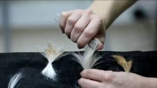 видео Инструменты для ухода за шерстью