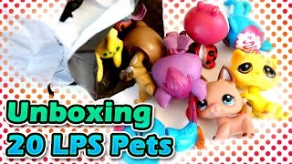 Unboxing 20 Littlest Pet Shop LPS from Ebay - Good or Bad? / Fake or Official?
