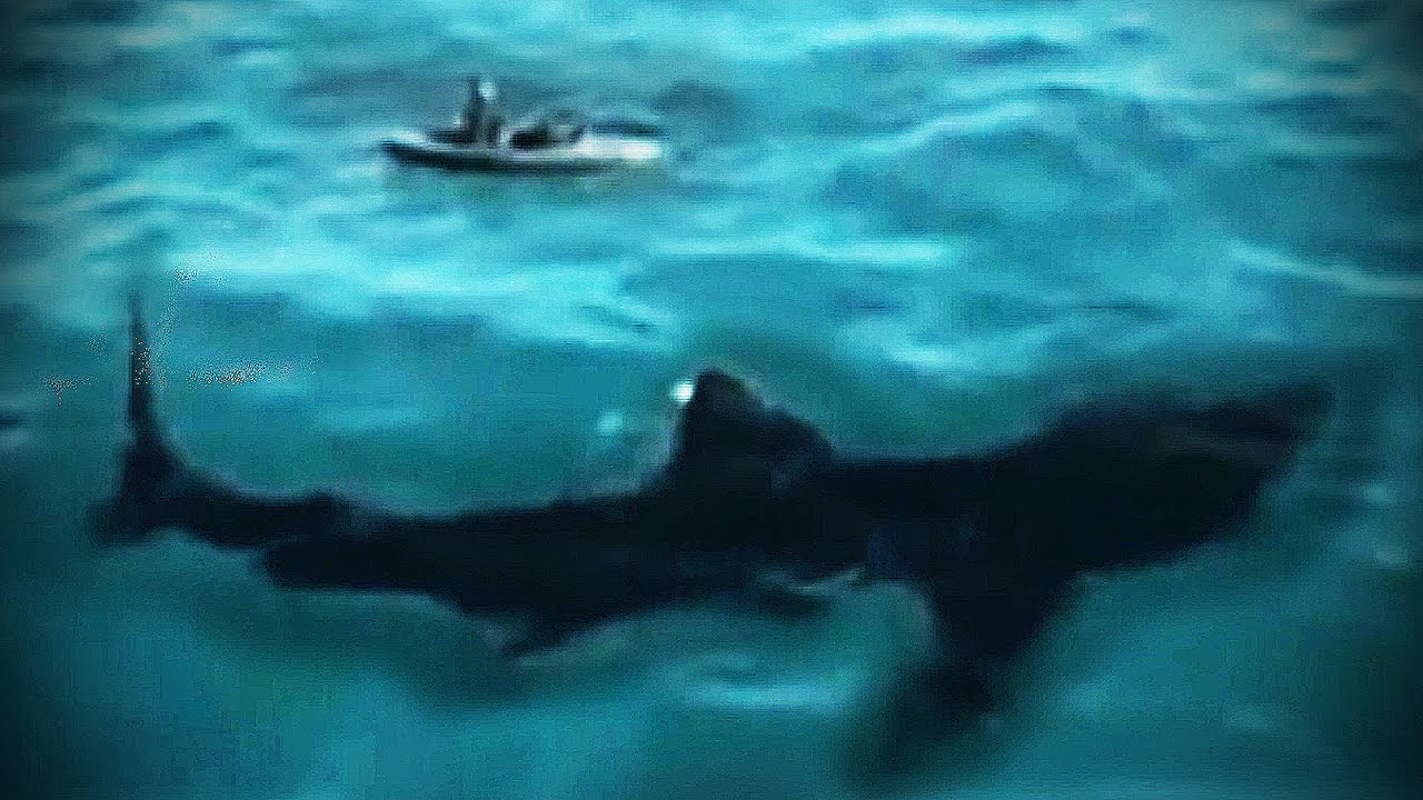 The Megalodon Shark Caught On Tape 42ft Shark Approaches