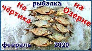Рыбалка на чёртика на Озернинском водохранилище в феврале 2020