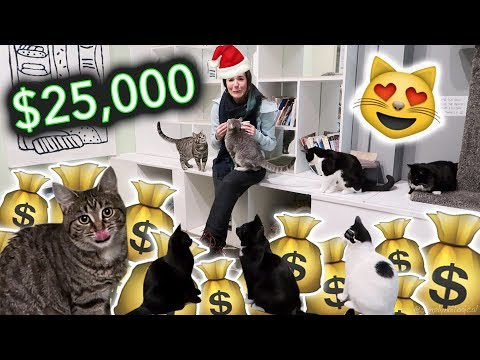 $25,000 for Feline Christmas Party