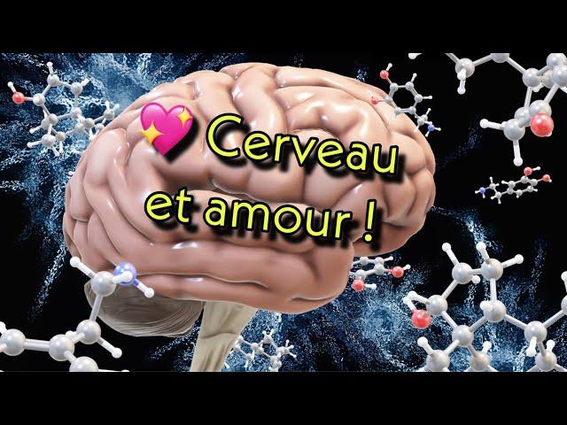 🧠 Cerveau & Amour !! 💖