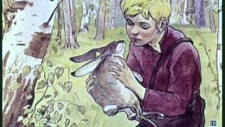 Заячьи лапы  Рассказы о животных