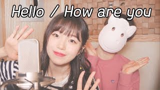 「Hello / How are you [ハロ/ハワユ]」 │Covered by 달마발 Darlim&Hamabal MP3