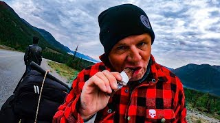RIDING OUR HARLEY DAVIDSON'S THROUGH WILD ANIMALS IN CANADA