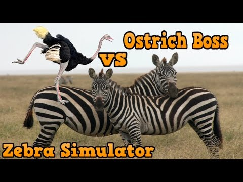 👍Zebra Simulator -USS- By Gluten free Games - iTunes/Android