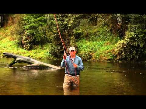 physics of fly fishing curren