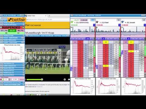 Horseracing - How to profit on Betfair trading on the front runners