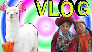 КОНКУРС ♥ Перу ♥ Куско ♥ Лама ♥ Кафе ♥ Экскурсия ♥Baunti Kisa♥(Просмотрите видео до конца и напишите в комментариях ответ на мой вопрос! Случайным способом будет определ..., 2015-05-19T16:46:50.000Z)