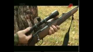 Оружие для загонной охоты нарезное или гладкоствольное  Weapons for systematic hunting rifled or smo
