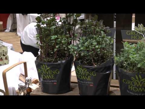 Growing Home - friske krydderurter dyrket på friland