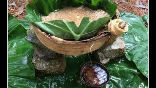 Primitive Technology: Filter Dirty Water