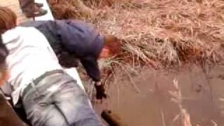 crazy guys - lewa valt water deel 1 en meer dan een half