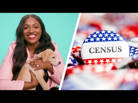 The 2020 Census Explained By Puppies And Kittens // Presented by BuzzFeed and the U.S. Census Bureau