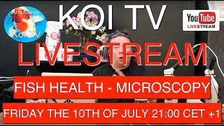 KOI TV LIVE! the 10th OF JULY 21:00 CET +1 | ENGLISH