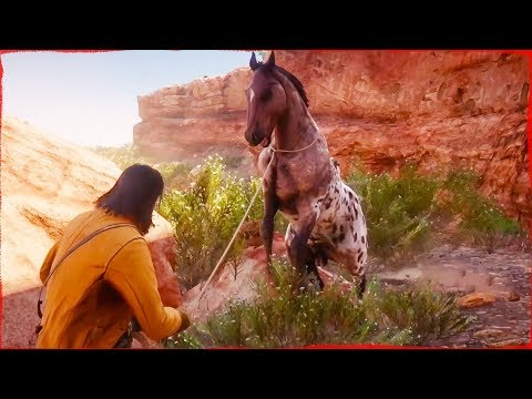 Red Dead Redemption 2 Free Roam Capturing Wild HORSES With John Marston #1