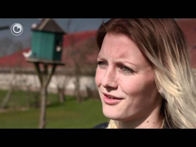 Fryslân Dok: 25 jier Aaipop