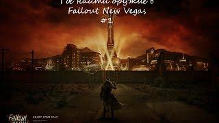 Где найти нормальное оружие в Fallout New Vegas