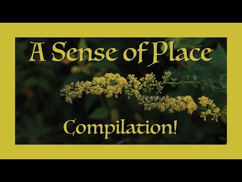 A Sense of Place Compilation!