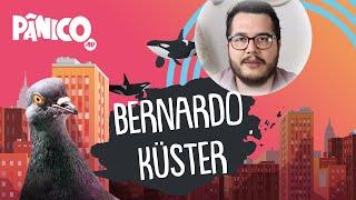 BERNARDO KÜSTER | PÂNICO - AO VIVO - 01/06/20