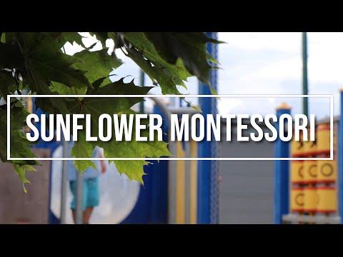 Sunflower Montessori   We care