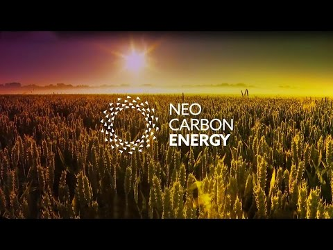 Neo-Carbon Energy: Future Energy System