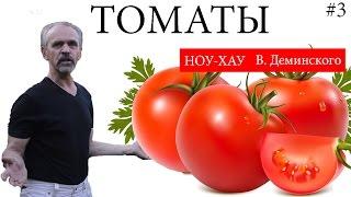 видео Выращивание и уход, пасынкование помидоров в теплице