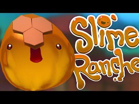 HONEY IS MONEY - Slime Rancher #5 - 동영상