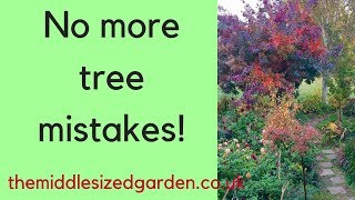 How to choose your perfect garden tree