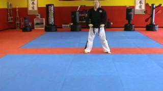 Tan Gun Form American Karate from Master Holan's Texas Karate Do