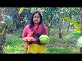 Vegetable Recipe: Cabbage with Tomatoes Cooking Recipe in Village by Mom | Village Food Factory