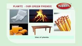 Plants | Science Basics For Children | Science Projects for Kids | Science Tricks
