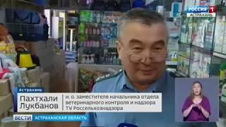 Контроль лекарственных средств ветприменения в Астрахани. Россия ТВ