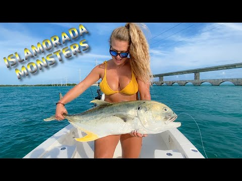 Florida Keys Inshore Fishing And Hand Feeding HUGE Tarpon At Robbie's Marina Islamorada!