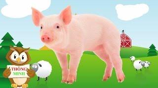 Con vật và tiếng kêu | bé học các động vật Con lợn Con chó Con mèo Con khỉ | dạy trẻ thông minh sớm