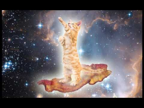 Ambient Cat Riding Bacon In Space Relaxing Meditation Concentration Study Work Music