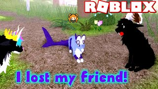 ROBLOX SUNDOWN ISLAND OCEAN PACK Shark Wolf! I LOST My FRIEND!