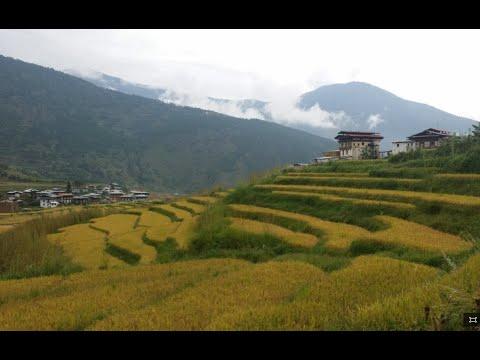 Punakha Butan (Bhutan)