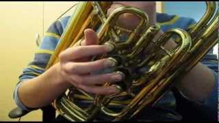 Slavko Avsenik - Ljubezen in hrepenenje (bariton solo)