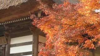 丹波景徳山 安国寺