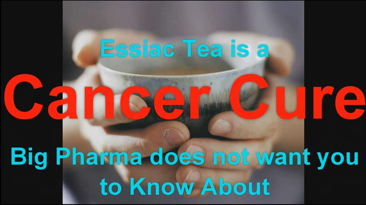 Cancer cure essiac herbal tea - Essiac Tea Is A Cancer Cure Big Pharma Does Not Want You To Know About