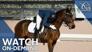 usef robert dover horsemastership clinic on demand