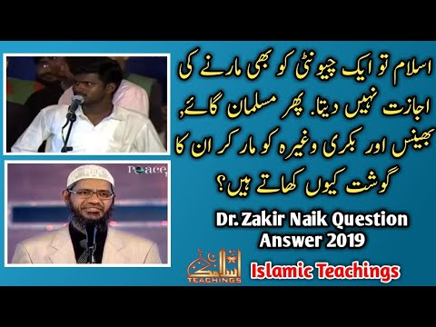 Dr Zakir Naik Question Answers 2019 | Why Do Muslims Have Non-Vegetarian Food | Dr Zakir Naik 2019