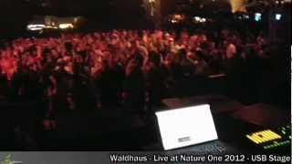 Waldhaus live - Nature One 2012 - USB-Stage